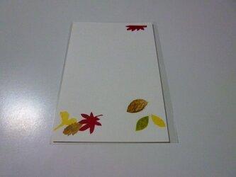 秋の公園で(ポストカード)の画像