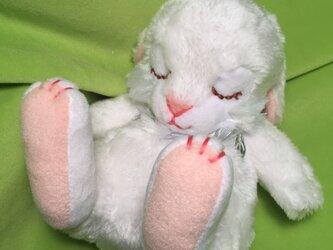 new眠りウサギ(ホワイト)の画像