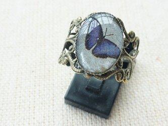 【非売品】プレゼント専用群青色の蝶のリングの画像