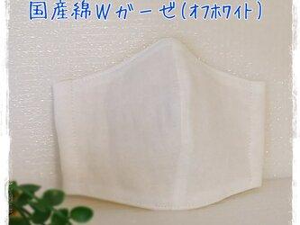 (L)オフホワイト*ワイヤ入りマスクの画像