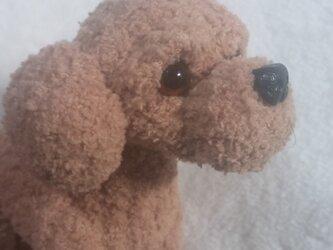 気分屋編み雑貨【プードル犬】④の画像