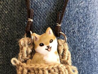 七宝 犬 ピンバッチネックレス 柴犬の画像