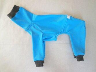 犬服 [受注生産]ウィペット用フルスーツ ライトブルーの画像