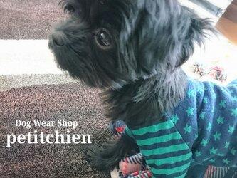 ★2018.1.11 Information 犬服雑貨petitchien ★の画像