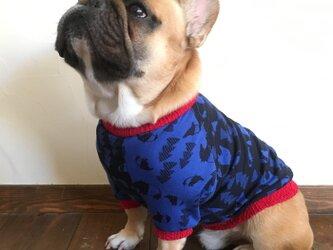 犬服【オーダー製作】バク柄ラグランTシャツの画像