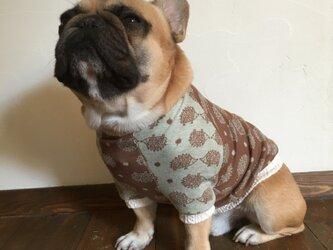 犬服【オーダー製作】ハリネズミ柄ラグランTシャツの画像