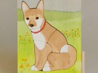 パズル 犬のロクの画像