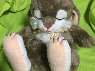 眠りウサギ(チャコールグレー)の画像