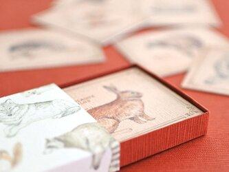 森の動物たちの小さなメッセージカードBOXの画像
