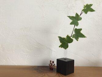 キューブ型 いちりんざし 黒檀 (こくたん) 3個セットの画像