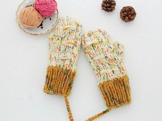 【Lady's】ほっこりあたたか冬手袋 NO:04の画像