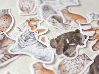 森の動物たちのフレークシールの画像
