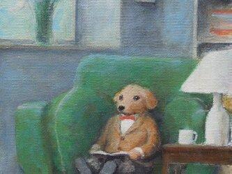 グリーンのソファ・子犬の画像
