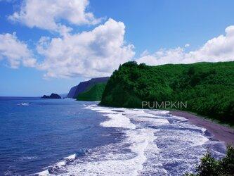 ハワイ島ボロル渓谷-1  PH-A4-0152   写真 ハワイ島 ハワイ諸島 太平洋の画像
