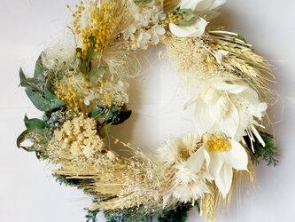 春 麦とミモザのリース ドライフラワー&プリザーブドフラワーの画像