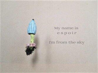 空からキノコの画像