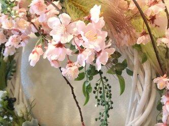 桜ふわり舞い踊る ・リースの画像