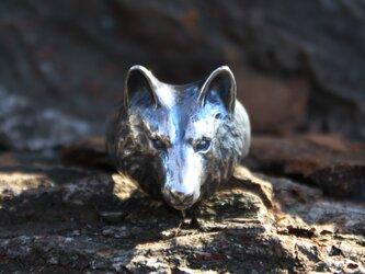 オオカミのリングの画像