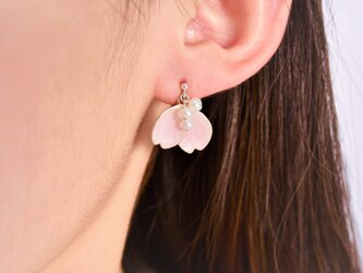- pink petals -七宝ピアス○silver925/淡水パールの画像