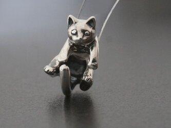 丸まったしっぽの猫ピアス Silverの画像