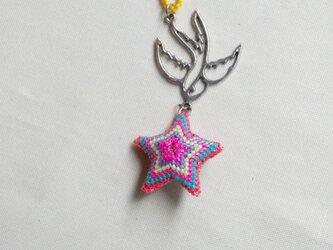 star swallowの画像