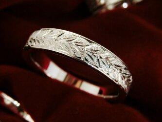 月桂樹の指環 ライン装飾(+オーダー制作ご案内)の画像