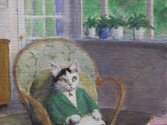 籐の椅子の子ねこの画像