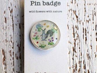 ピンバッジ「野の花といきもの」の画像