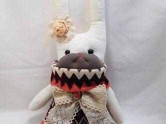 ☆ くたっと・ウサギ Part(3)☆の画像
