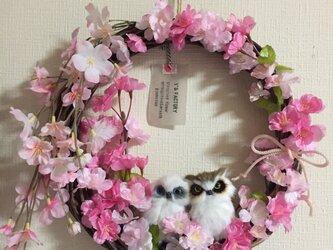 再販 しだれ桜とふくろうのリース LLの画像