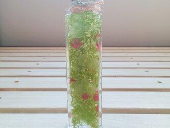 【ハーバリウム】プレゼント、インテリアにご利用ください♪【グリーン・赤フラワー】の画像