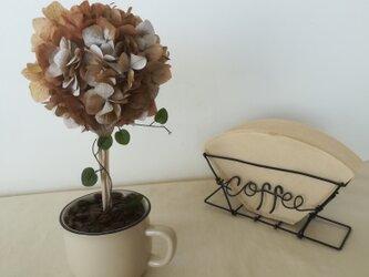 【送料無料】cafe トピアリーの画像