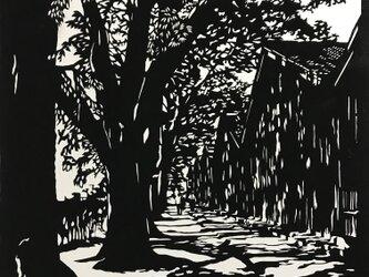 切り絵 木漏れ日の道の画像