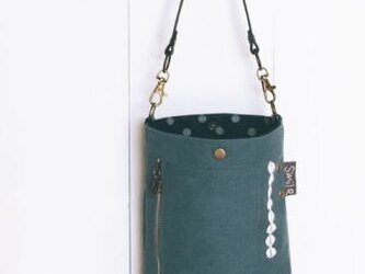 bag in & on minibagの画像