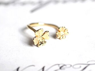 iNG -clover 2 ring-の画像