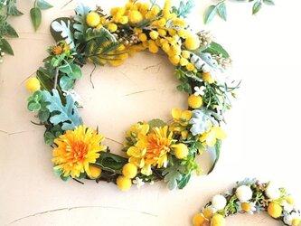 春うらら ミモザ・タンポポ・菜の花 春リースの画像