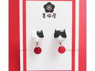 猫のイヤリング~ブチとハチワレ2の画像