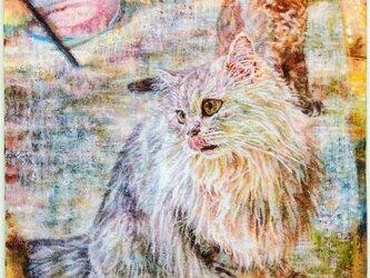 受注制作/動物肖像画(猫や犬や鳥など似顔絵)承ります。[画材:キャンバス/油彩](オーダー)の画像