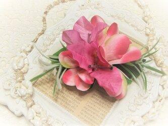 フラガール 2wayクリップ プルメリア&ブーゲンビリア☆*:ピンクの画像