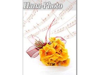 1285)楽譜と花:春の花    ポストカード5枚セットの画像