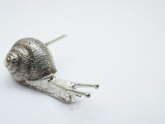 Snail pinsの画像