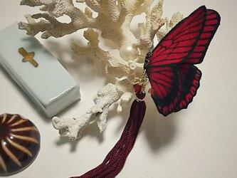 蝶のピアス 大 (マダラ)の画像
