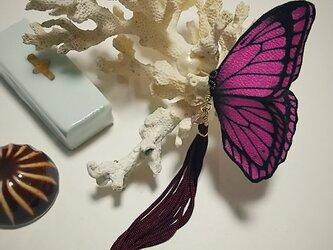 蝶のピアス 大 (モルフォ)の画像