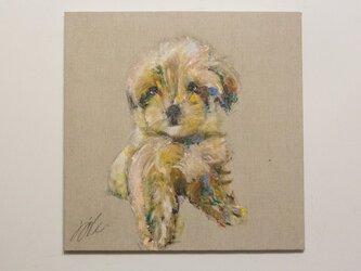 Poodle / プードル キャンバス作品。の画像