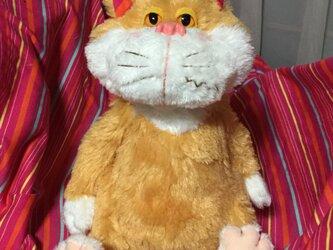 やんちゃ茶猫の画像