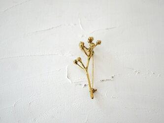 ノイバラの実ブローチ brassの画像