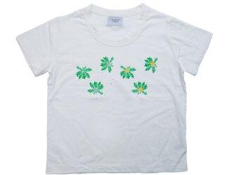 ボディから当店オリジナル! たんぽぽTシャツ レディースフリー  Tcollectorの画像