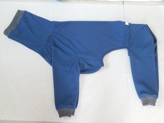 犬服 S様オーダーメイド品ワイマラナー用フルスーツ ネイビーブルーの画像