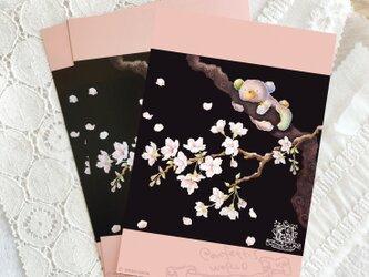 sakura(ポストカード・3枚セット)の画像