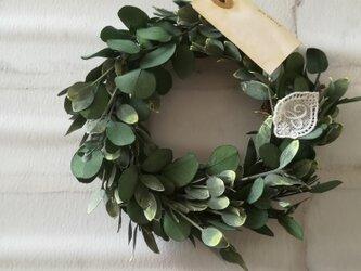 【送料無料】さりげないユーカリtenori wreathの画像